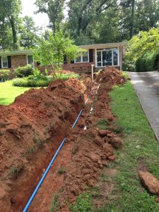 sewer line invasion home