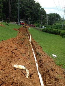 sewer line invasion laying